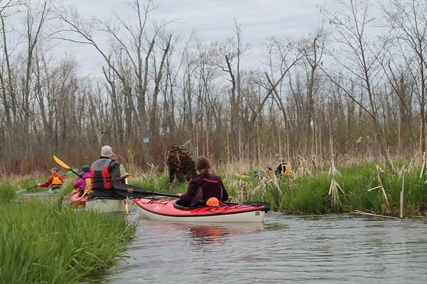 Minesing Swamp 2019
