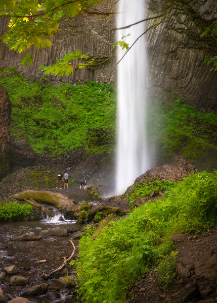 Oregon-175-2.jpg