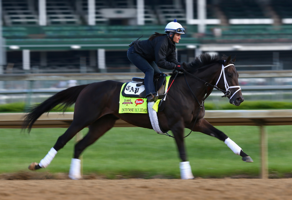 . Intense Holiday runs on the track during the morning training for the Kentucky Derby at Churchill Downs on May 1, 2014 in Louisville, Kentucky.  (Photo by Andy Lyons/Getty Images)