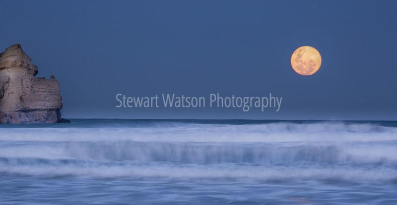 Blue moon 5106SmugMug.jpg