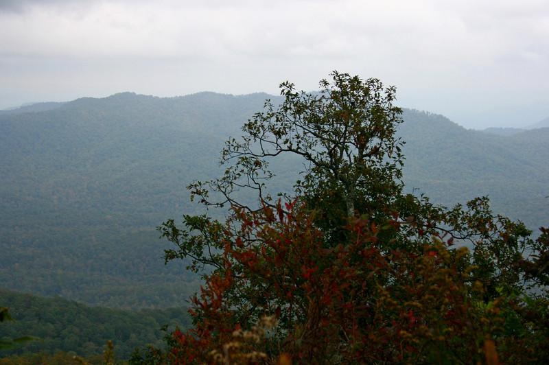 Pisgah Forest 9-30-12 115.jpg
