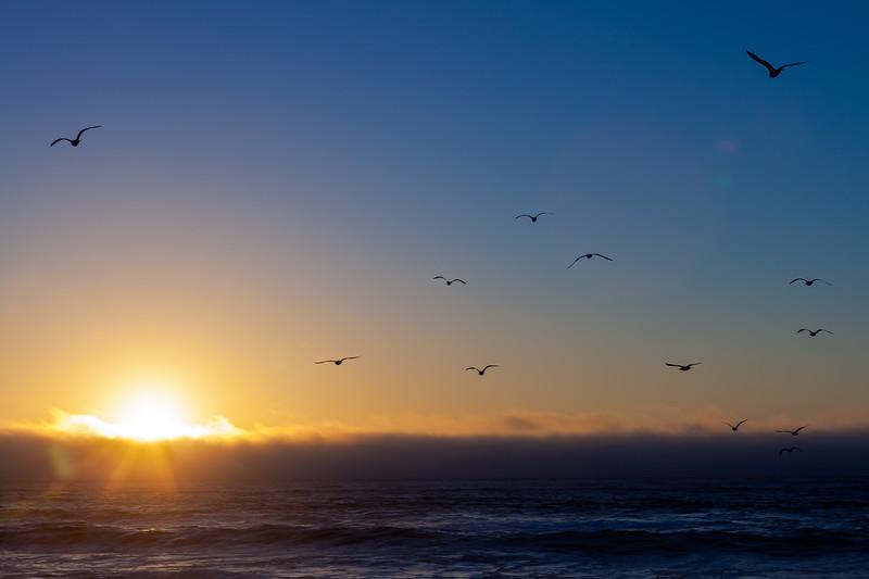 Sunset 5, Pescadero State Beach, California, 2010