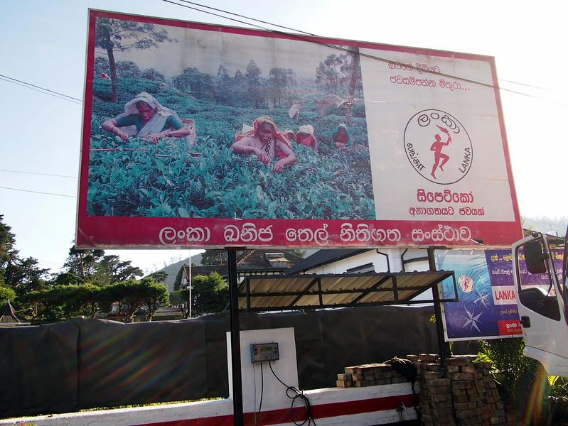 P2168548-ceypetco-billboard.JPG