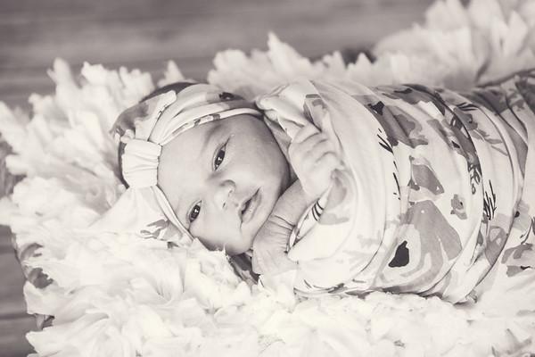 Brynn's Newborn Portraits