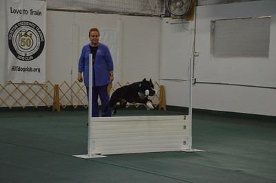 2018 October Rally/Obedience Trials