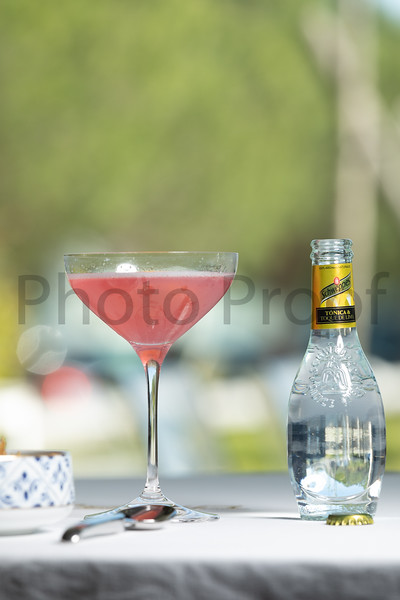 BIRDSONG Schweppes Cocktails 120.jpg