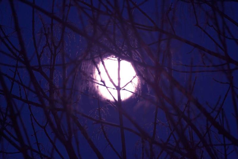 Moon 12 12 16 D.jpg