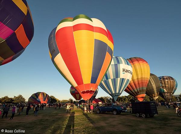 Wairarapa Balloon Festival 2019