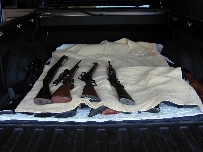 guns4.jpg