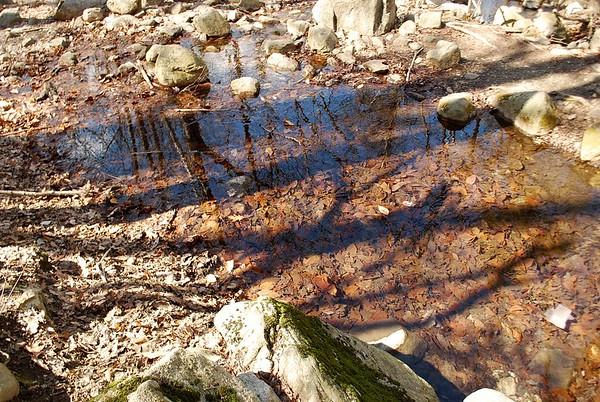 Pine Meadow Lake Hike 041815