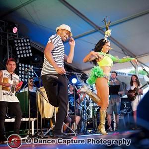 Multicultural Festival 2016