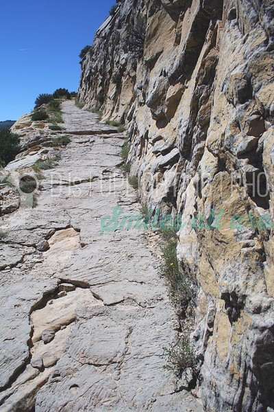 Rocky Trail_batch_batch.jpg
