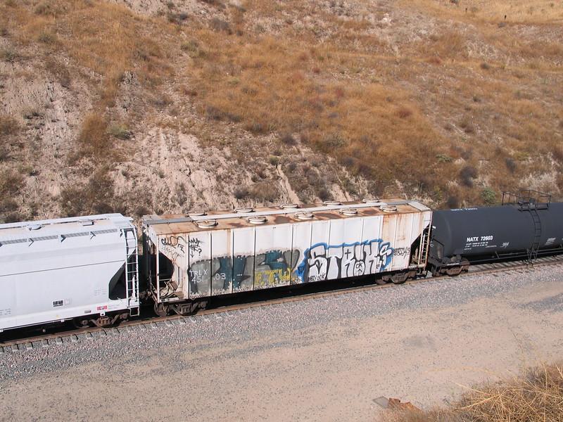 TRLX45103.JPG