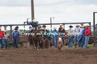 Calf Roping 06-01-14