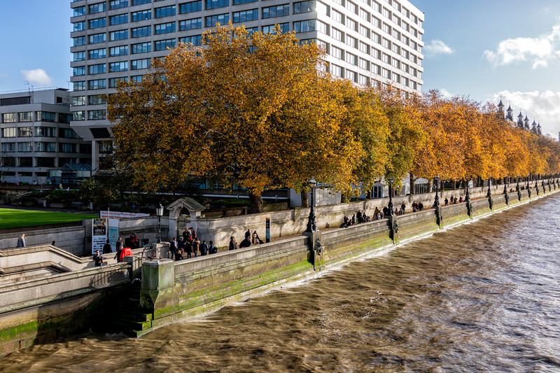 South Bank of the Thames.jpg