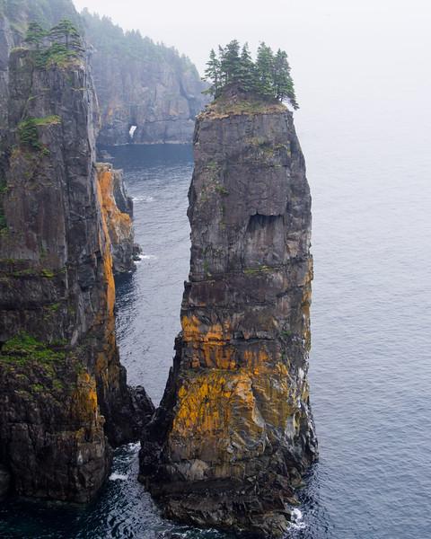 Sea Stack - Spout Path, East Coast Trail