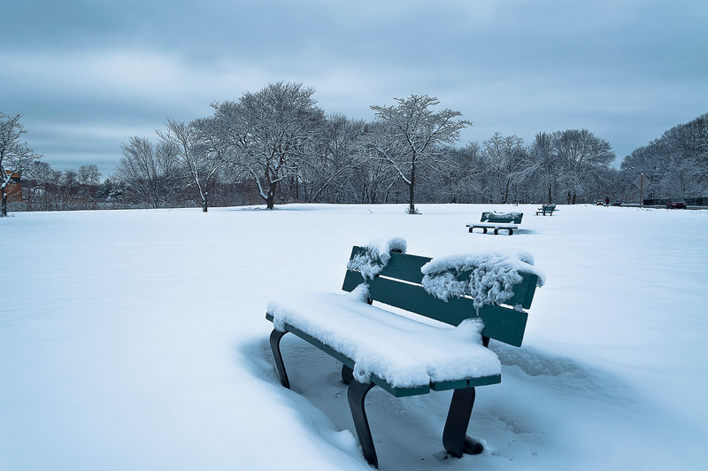 Winter 5.jpg