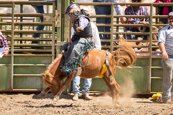 2018 SoCal. Jr. Bronc Riders - September