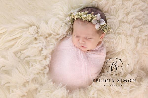 Shenkman Newborn
