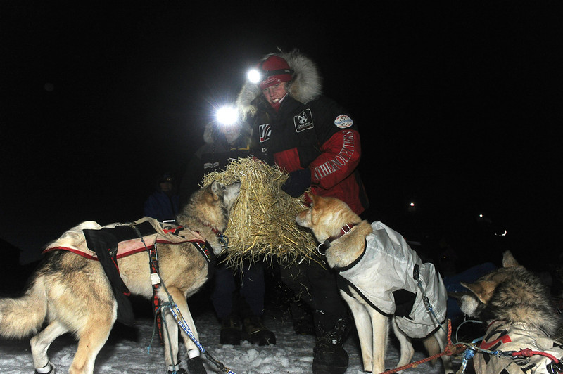 . Iditarod musher Aliy Zirkle, from Two Rivers, Alaska arrived second behind Jeff King into the White Mountain checkpoint during the Iditarod Trail Sled Dog Race on Monday, March 10, 2014. (AP Photo/The Anchorage Daily News, Bob Hallinen)