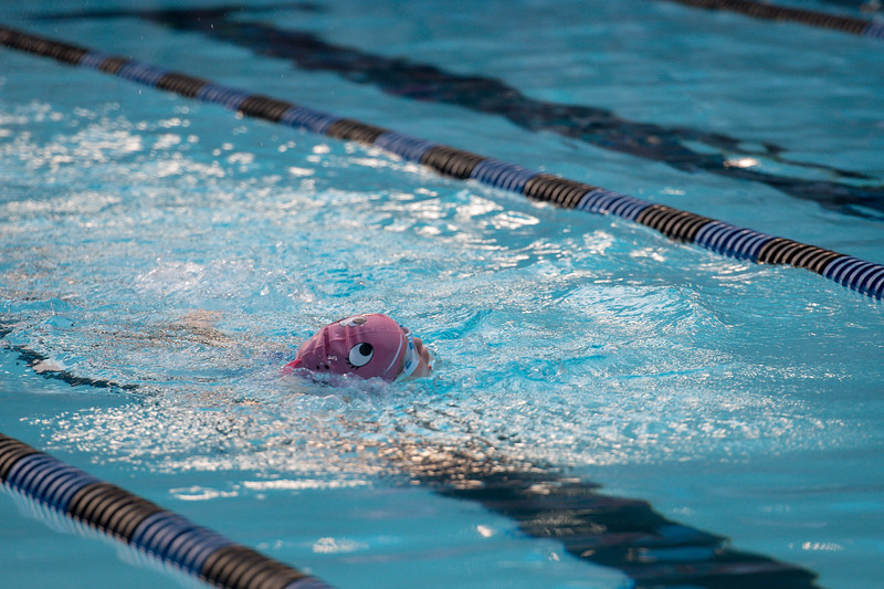 lcs_swimming_kevkramerphoto-905.jpg