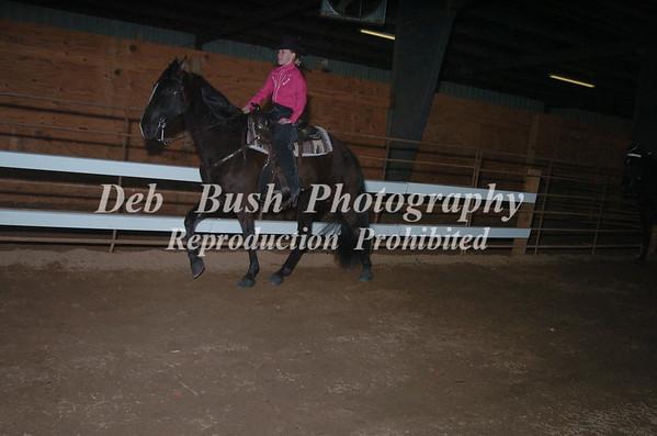 CLASS 10 WALKING HORSE TRAIL PLEASURE SPECIALTY