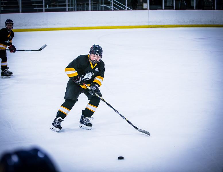 Bruins2-449.jpg