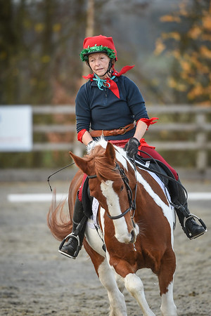 Lincomb EC Unaffiliated Dressage, 2nd December 2018
