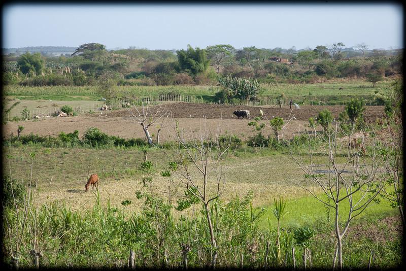 Cuba-Trinidad-IMG_2437.jpg