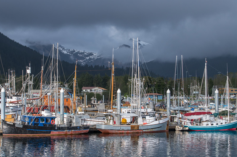 Sitka and day 2-511