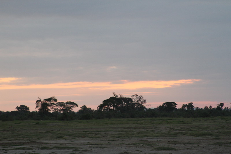 Kenya 2019 #2 1838.JPG