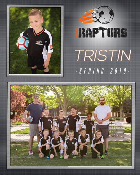 Trsistin_Team.jpg