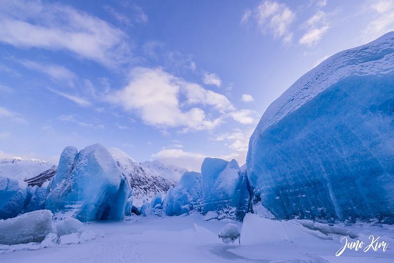 2020-01-17_Alaska Wild Guides-6102749-Juno Kim.jpg