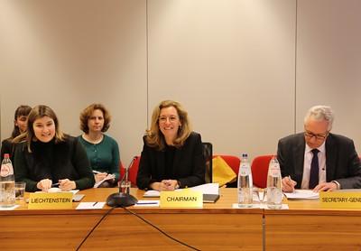 2019-02-08-EFTA Standing Committee and EEA Joint Committee