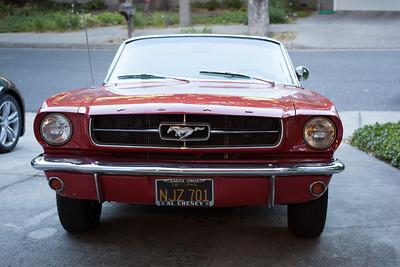 Rose - 1965 Mustang