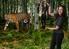 Berkenbos tijger - Nadia5-167-droste PS - Ax