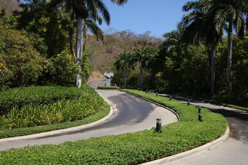 2020 Costa Rica 0596.JPG