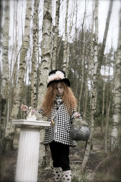 Magic Birch Forestes