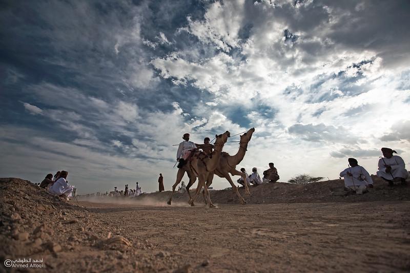 Camel Race  (55).jpg