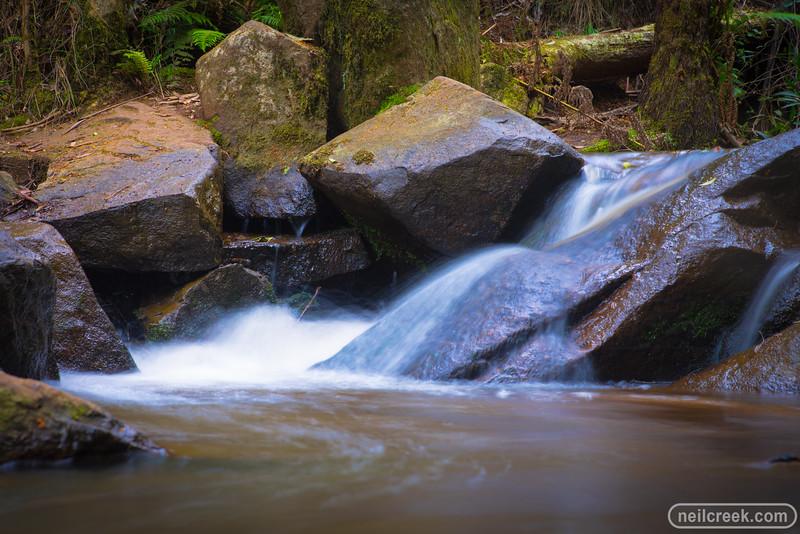 creek151010-086.jpg