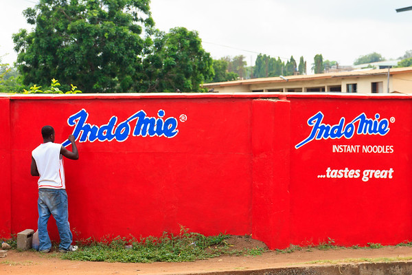 Accra, Hohoe, Wli, Tafi Atome Monkey Sanctuary