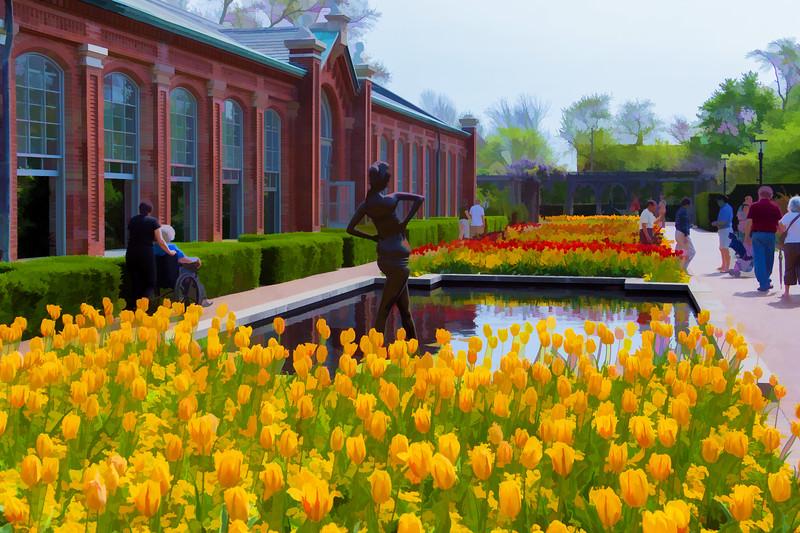 Tulips05