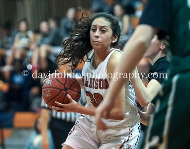 Girls JV Basketball vs Reagan 012919