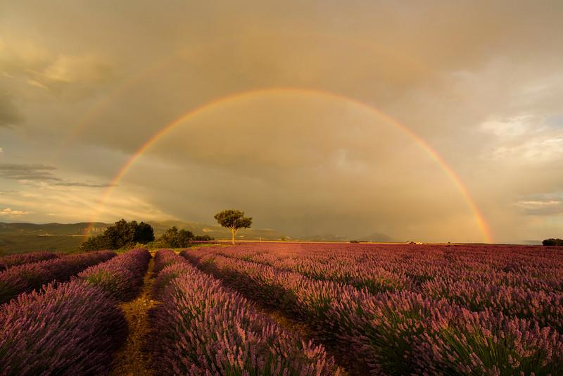 rainbow moment.jpg