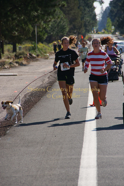 On The Doggie Dash Course