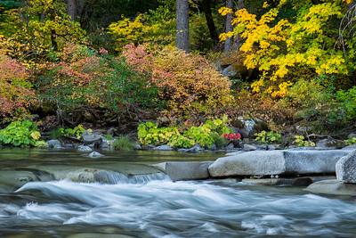 Yuba River Autumn