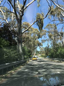 Back Roads To One Tree Hill - Sun 17 Nov 2019