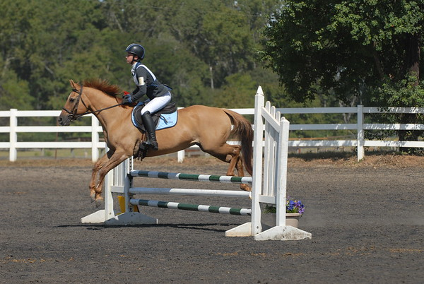Red River Pony Club Jump Rally 2016