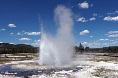 Yellowstone Summer 2011