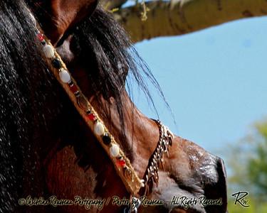 PA Ghazal 04/30 - head shots